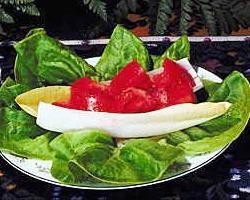Salata od rajcice