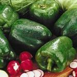 Salata od zelene paprike