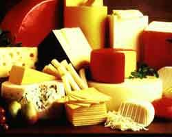 Vrste sireva – najpoznatiji sirevi